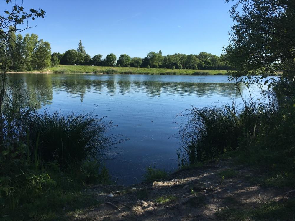 Balades autour de Lyon : Grand parc de Miribel Jonage