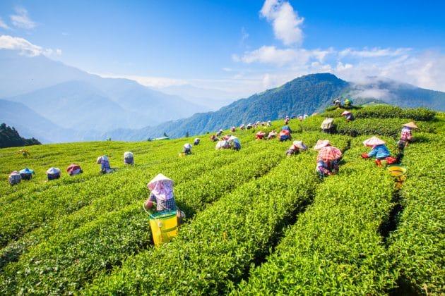 « La vérité sur… » Taïwan : 3 idées reçues