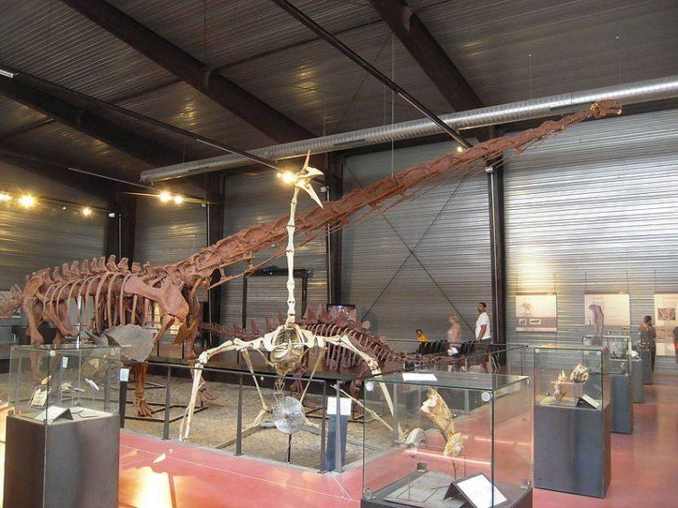Dinosauria, Aude