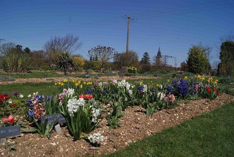 Jardin botanique de la Brisatte