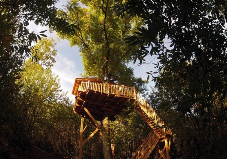 La Cabane Escalier