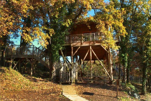 Les 7 plus belles cabanes dans les arbres en Dordogne