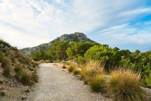 Les 18 choses incontournables à faire dans les Pyrénées-Atlantiques
