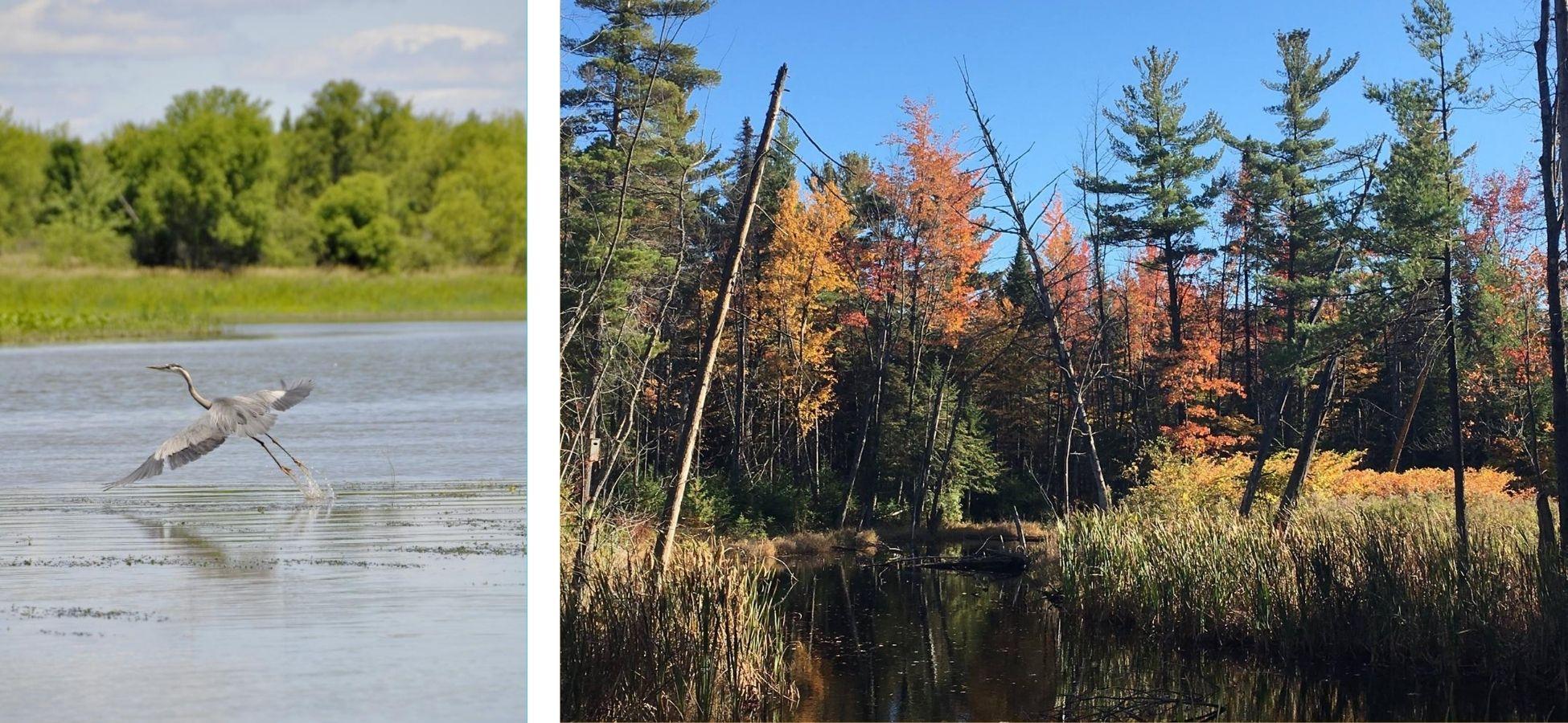 Lac Saint-Pierre et Parc Régional des Grèves