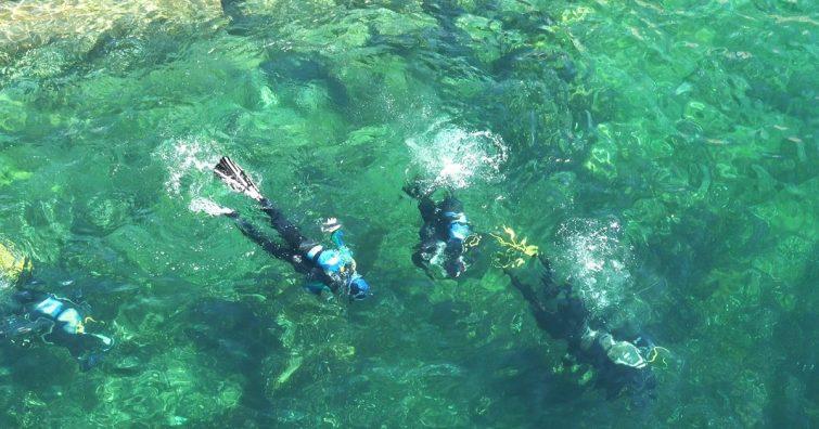 Les Aquanautes Capbreton