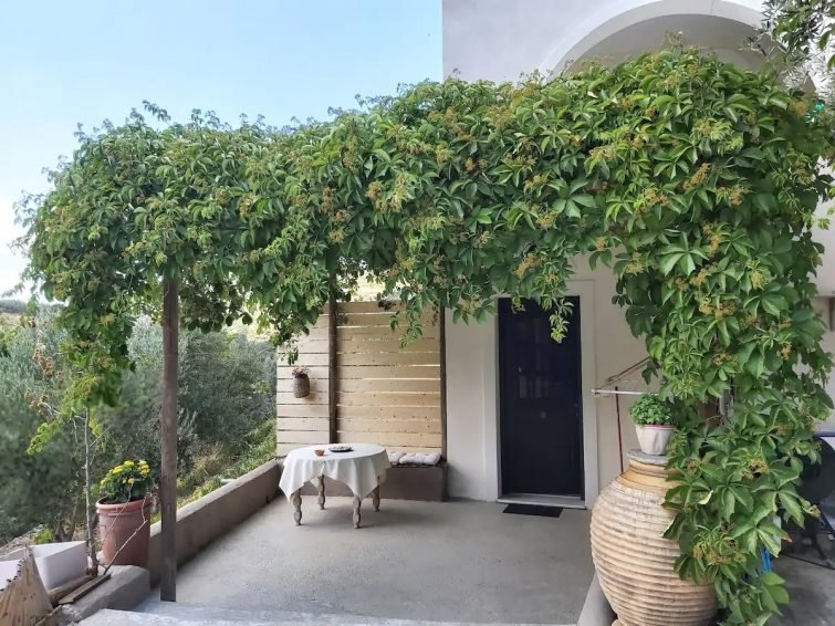 airbnb Naxos - Countryside Home