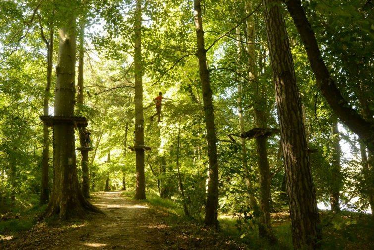 Accrobranche en Occitanie : Auterive