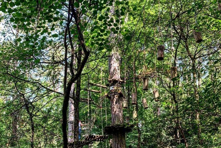Accrobranche en Occitanie : La Canourgue