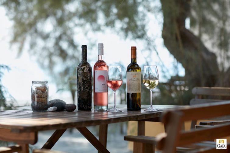 Déguster du vin à Santorin : Gaia Wines