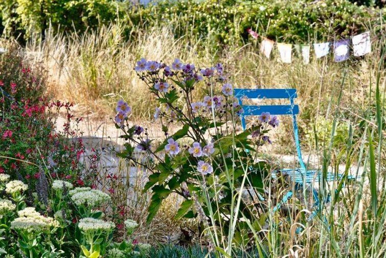 Terrarium à Paris : jardin suspendu