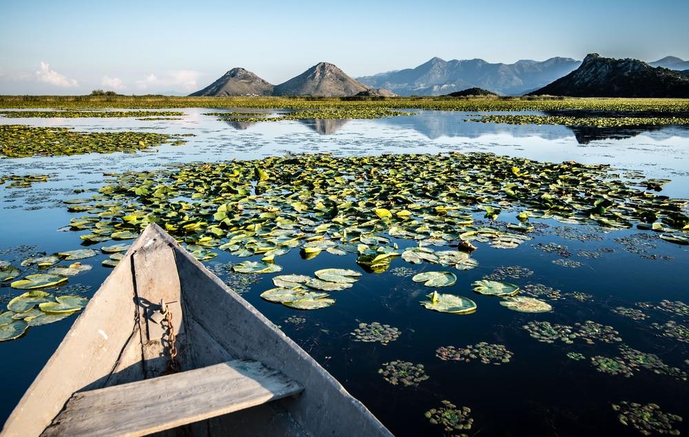 Le lac Skadar permet de magnifiques croisières