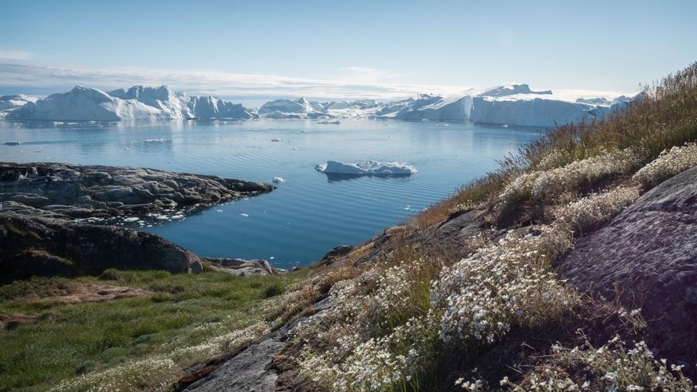 Groenland - Vikings