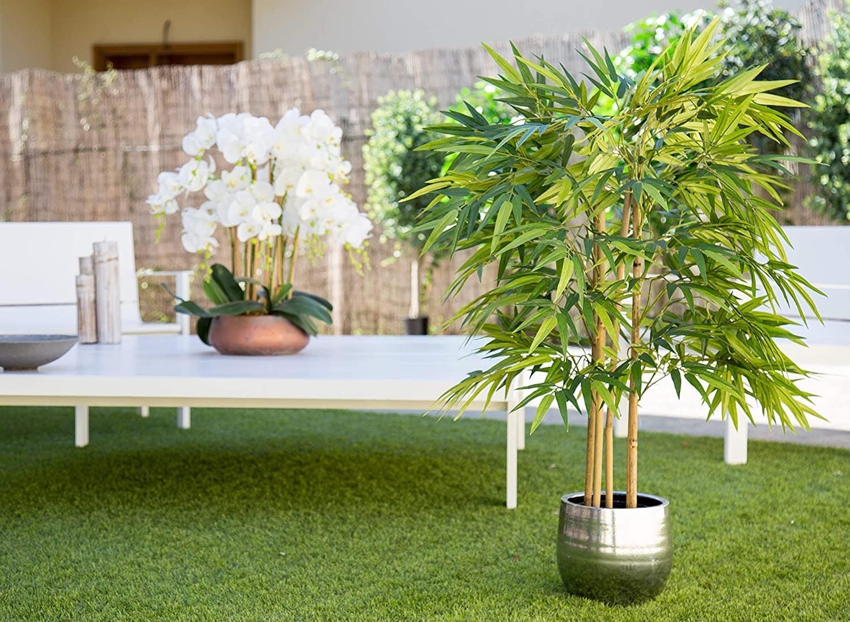 Un bambou artificiel à anches naturelles