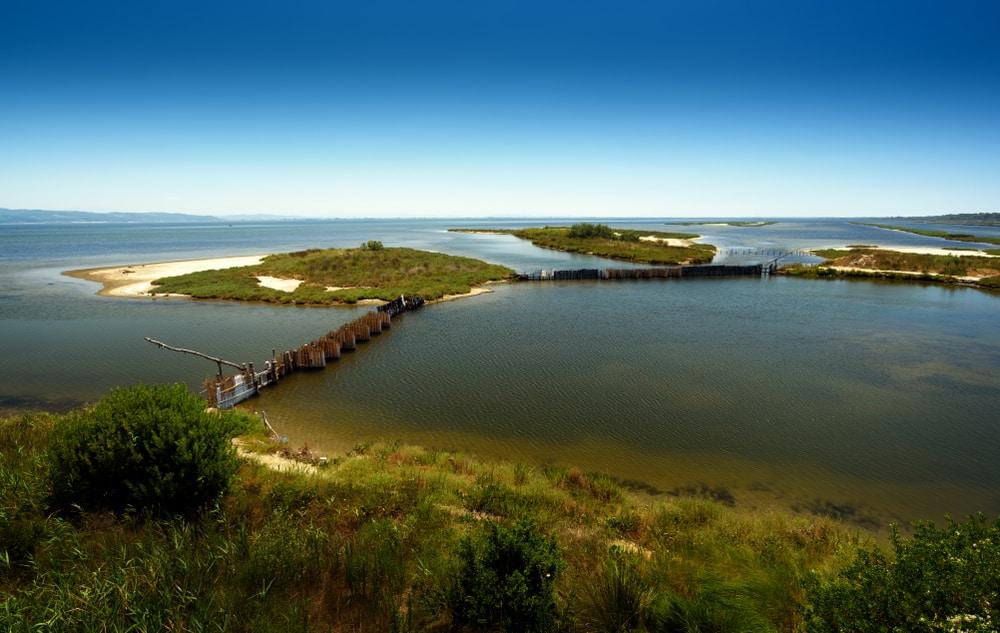 Lagune de Karavasta