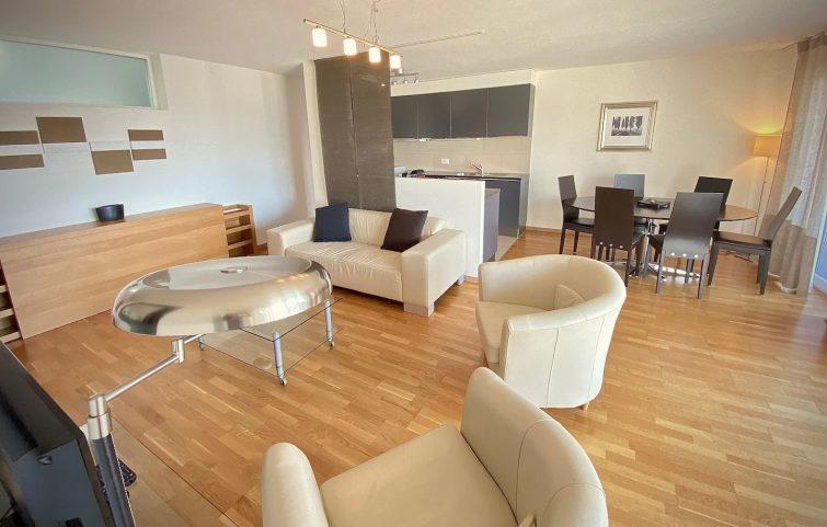 Grand appartement dans le quartier du Flon