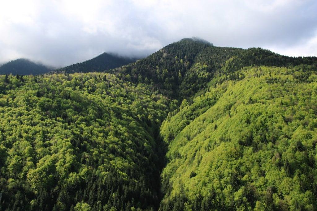 Col de Tihuta