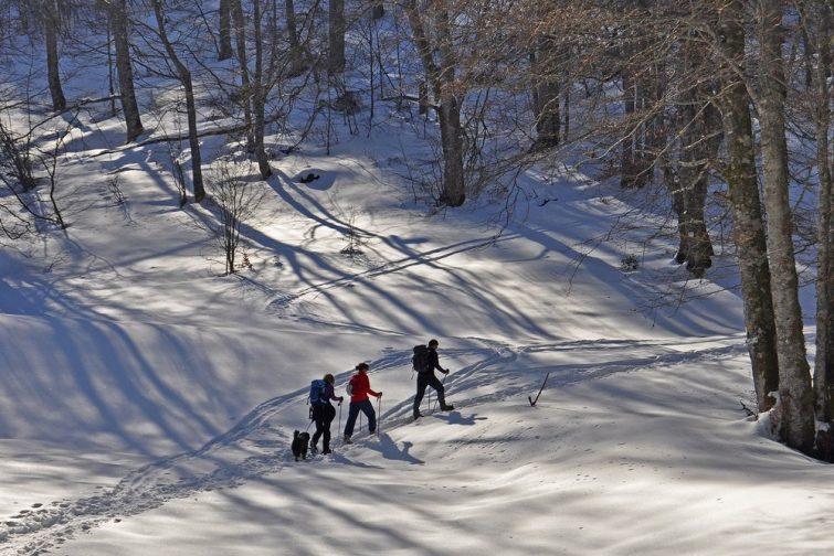 Faire des randonnées en raquettes à Grand Tourmalet
