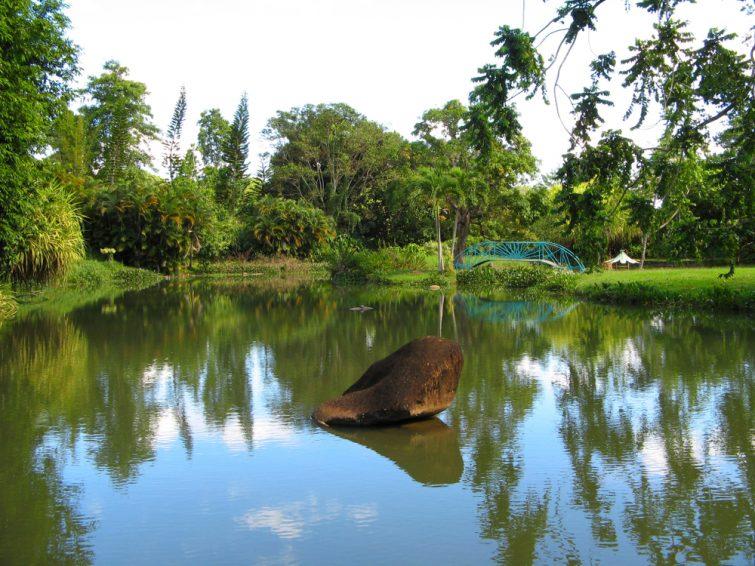 Road trip en Guadeloupe : Jardin d'Eau de Blonzac