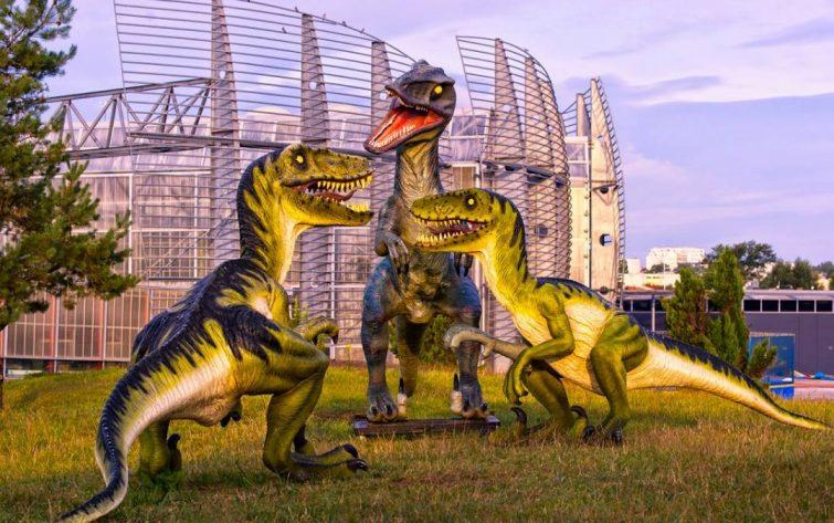 Jardin Jurassic Planet Exotica