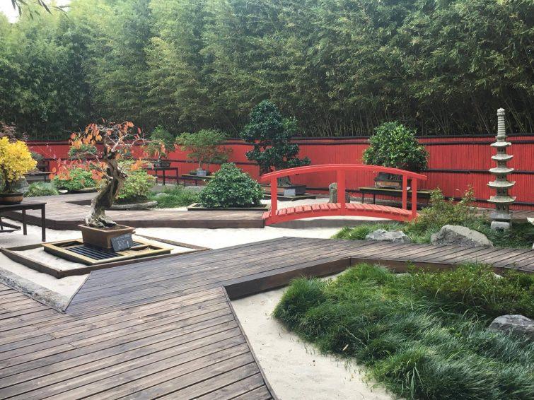 Jardin zen Planet Exotica
