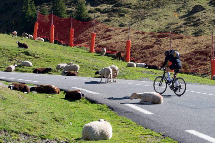 Cycliste montant le col du Tourmalet, Pyrénées