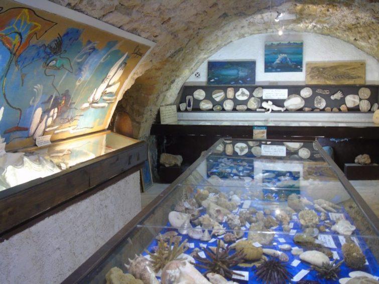 Musée George Mazoyer