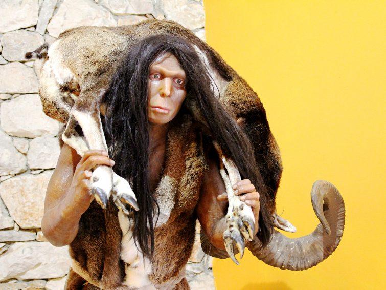 Musée de Tautavel préhistoire