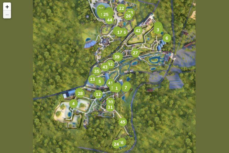 Plan des animations du zoo de Beauval