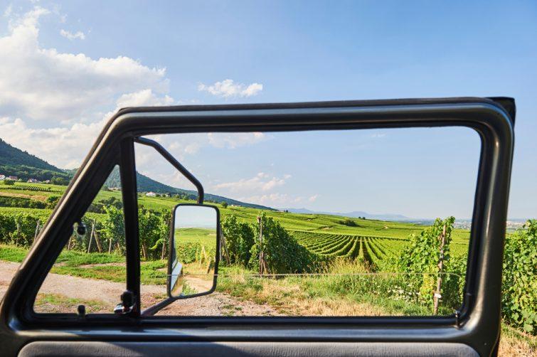 Paysages alsaciens : Vue sur les vignobles à travers la fenêtre de la voiture près d'Eguisheim (département du Haut-Rhin, région du Grand Est, France)