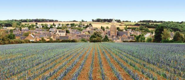Où manger à Saint-Suliac ?