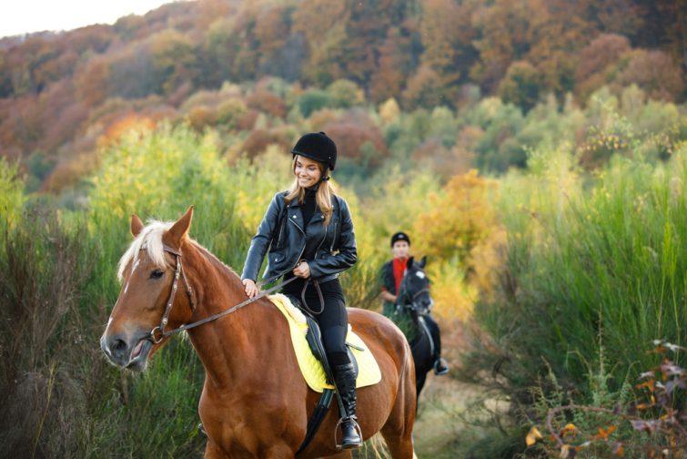 Visiter le parc régional des Ardennes