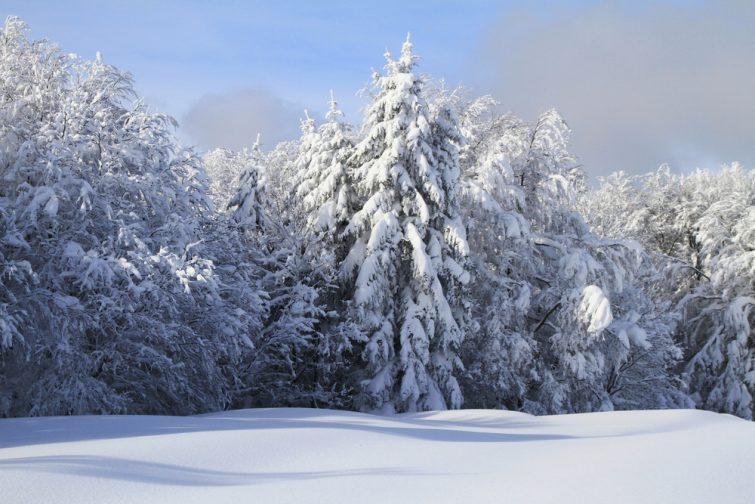 randonnée - marche nordique - Vosges, Gérardmer