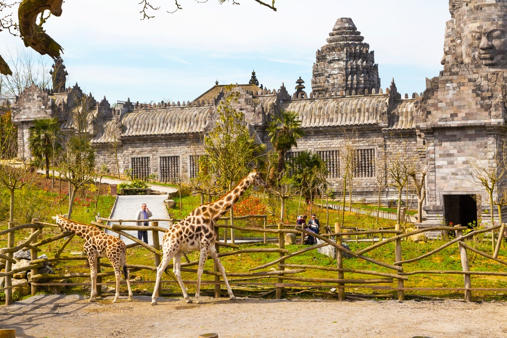 Pairi Daiza-zoo-balades-autour-de-bruxelles