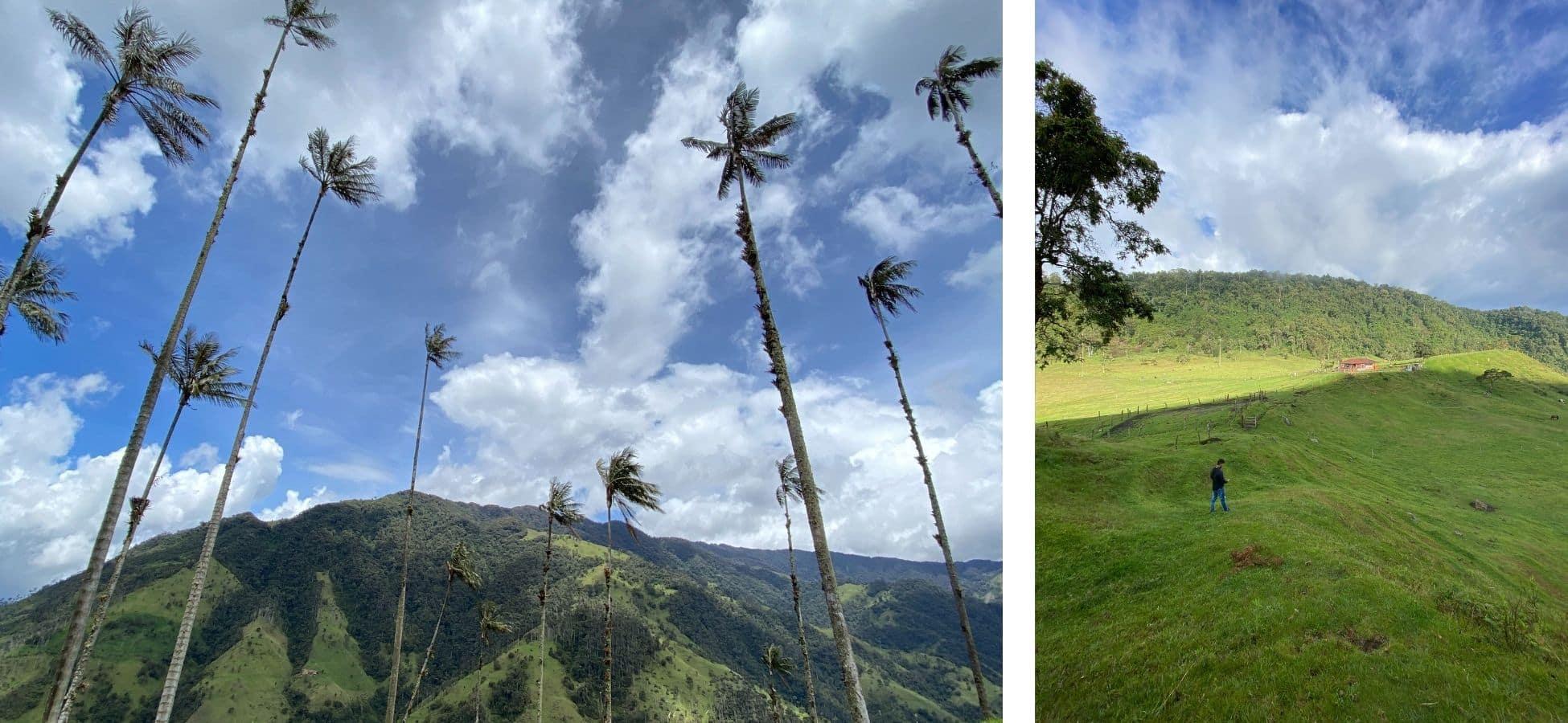 carbonera-cerro-machin-confinement-en-Colombie