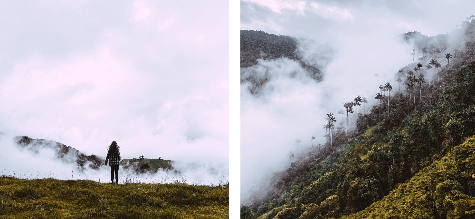 carbonera-tolima-quindio-colombie
