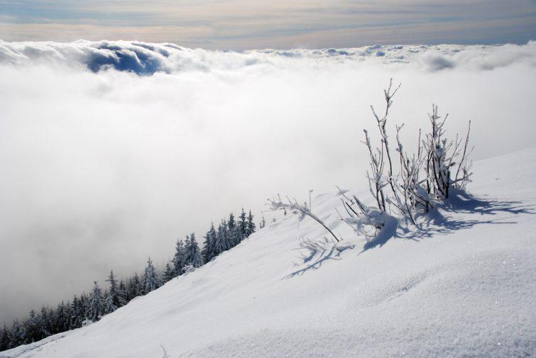 chalam-jura-hiver