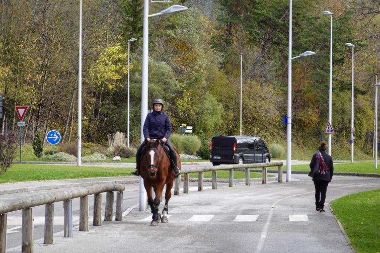 Equitation activité outdoor à la Norma