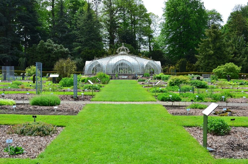 jardin-botanique-meise-belgique