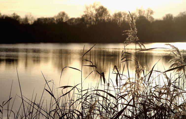 Lac Schulens Belgique