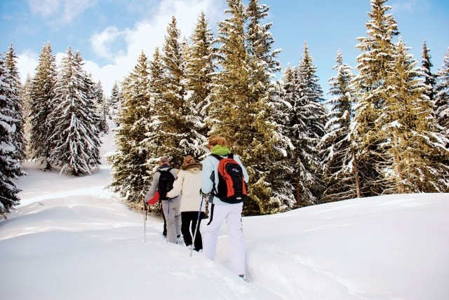 ski-randonnée