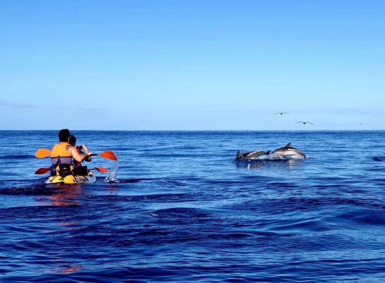 tenerife-activites-outdoor-kayak