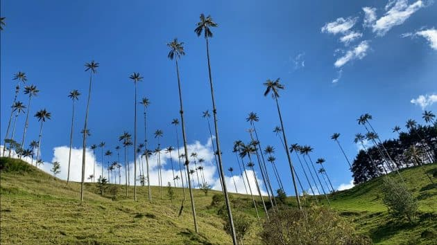 Mon confinement en Colombie : récit d'un voyage imprévisible
