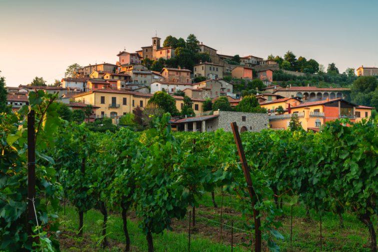 Vignoble visiter Brescia