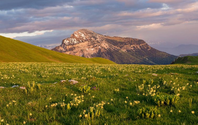 visiter-parc-naturel-regional-chartreuse-guide