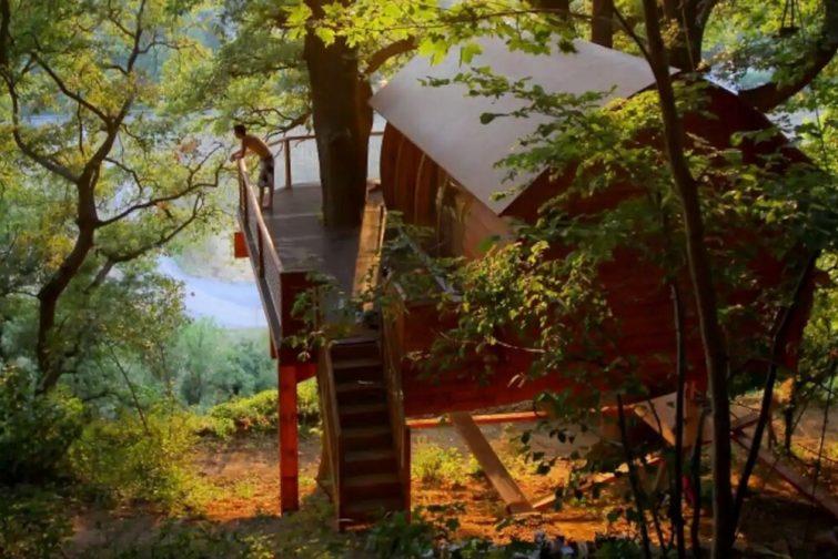 Cabane dans les arbres Aveyron