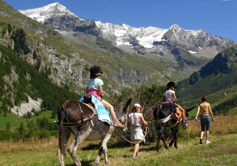 Peisey-Vallandry-cheval