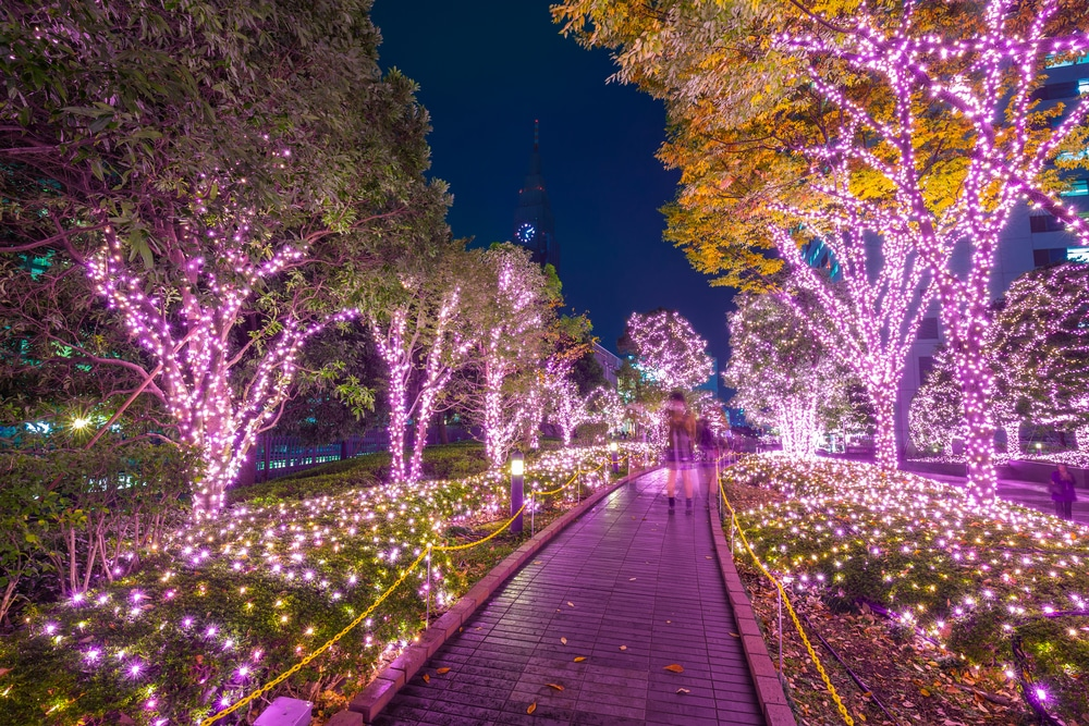 Illumination de Noel au Japon