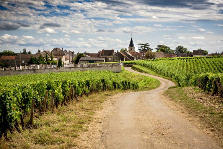 Route des vins à vélo Week-end en amoureux en Bourgogne
