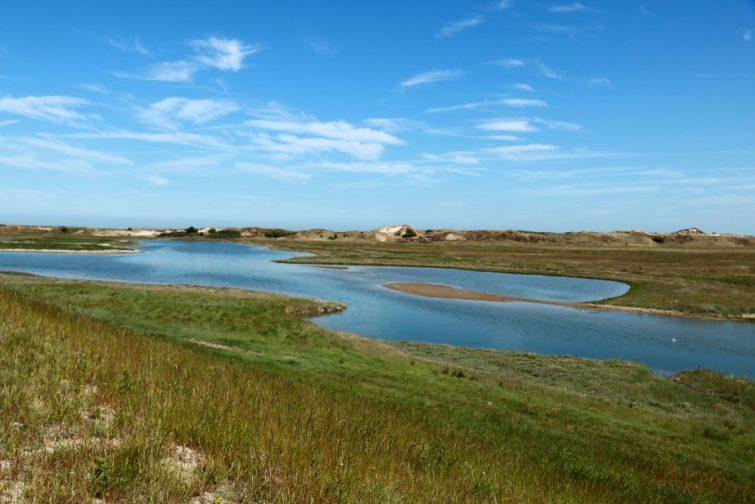 Parc naturel Le Zwin