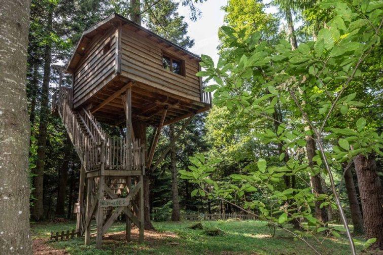 Cabane Hérisson : Cabane dans les arbres